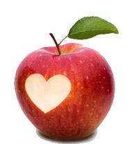 Appel-hartcoherentie